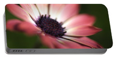 Beautiful Rich African Daisy Zion Red Flower Portable Battery Charger