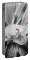 Beautiful Splash Of Purple On A Daisy In The Garden Portable Battery Charger