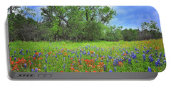 Beautiful Texas Spring Portable Battery Charger
