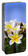 Beautiful White Frangipani Flowers Portable Battery Charger