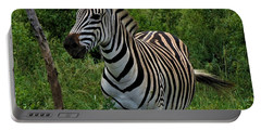 Beautiful Zebra Portable Battery Charger