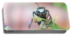Bee Busy Portable Battery Charger