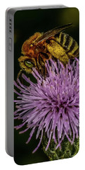Portable Battery Charger featuring the photograph Bee On A Thistle by Paul Freidlund