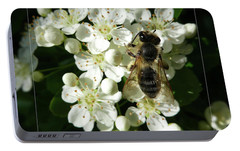 Portable Battery Charger featuring the photograph Bee On White Flowers 2 by Jean Bernard Roussilhe
