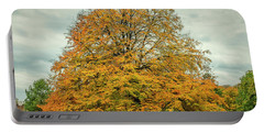 Beech Tree In Autumn Portable Battery Charger