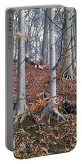 Beech Trees Portable Battery Charger