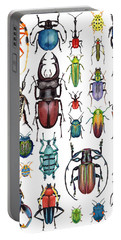 Beetle Collection Portable Battery Charger by Kelly Jade King