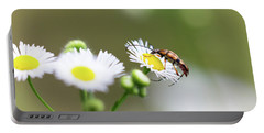 Beetle Daisy Portable Battery Charger