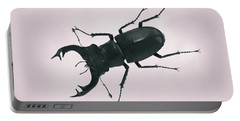 Beetle Portable Battery Charger
