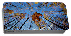 Portable Battery Charger featuring the photograph Before The First Snow by Mircea Costina Photography