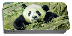 Bei Bei Panda At One Year Old Portable Battery Charger