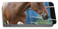 Being Awesome With My Horse Portable Battery Charger