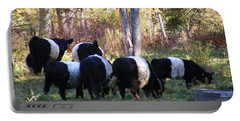 Belties Portable Battery Charger