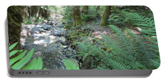 Portable Battery Charger featuring the photograph Beyond The Ferns by Marie Neder
