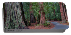 Big Basin Redwoods Portable Battery Charger