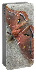 Big Beautiful Silk Moth Portable Battery Charger