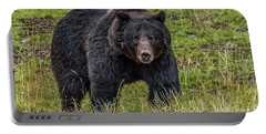 Portable Battery Charger featuring the photograph Big Black Grizzly Boar by Yeates Photography