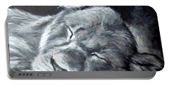 Big Catnap  Portable Battery Charger