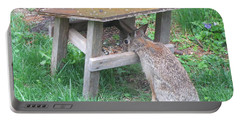 Big Eyed Rabbit Eating Birdseed Portable Battery Charger by Betty Pieper