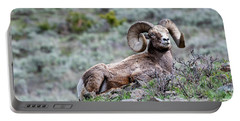 Big Horn Sheep #2 Portable Battery Charger