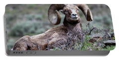 Big Horn Sheep #3 Portable Battery Charger