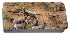 Big Horn Sheep Family Portable Battery Charger