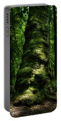 Big Moody Tree In Forest Portable Battery Charger