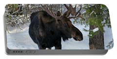 Big Moose Portable Battery Charger