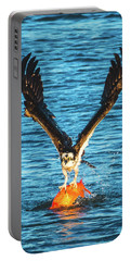 Big Orange Koi Fish Wins Portable Battery Charger