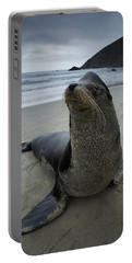 Big Seal Portable Battery Charger