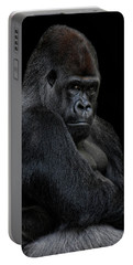Big Silverback Portable Battery Charger