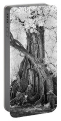Big Tree Portable Battery Charger