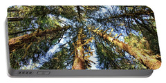 Big Trees In Olympic National Park Portable Battery Charger
