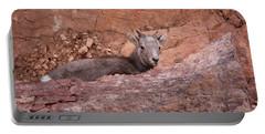 Bighorn Lamb1 Portable Battery Charger