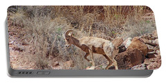 Bighorn Ram Of The Mountain Desert Portable Battery Charger