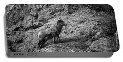 Bighorn Sheep Ewe On Wolf Creek Pass Portable Battery Charger