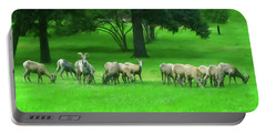 Portable Battery Charger featuring the digital art Bighorn Sheep Ewes  by Chris Flees