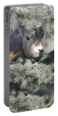 Portable Battery Charger featuring the photograph Bighorn Sheep Lamb's Hiding Place by Jennie Marie Schell