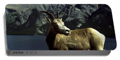 Bighorn Sheep Portable Battery Charger by Sally Weigand