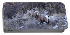 Bighorn8 Portable Battery Charger