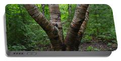 Birch Bark Tree Trunks Portable Battery Charger