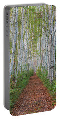 Birch Path Portable Battery Charger