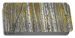 Birch Tree Grove With A Touch Of Yellow Color Portable Battery Charger