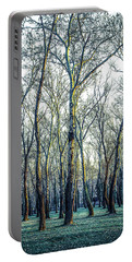 Birch Tree Woodland Portable Battery Charger by Lana Enderle