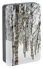 Portable Battery Charger featuring the photograph Birches In Snow by Alex Lapidus