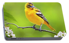 Bird And Blooms - Baltimore Oriole Portable Battery Charger by Christina Rollo
