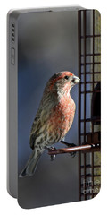 Bird Feeding In The Afternoon Sun Portable Battery Charger