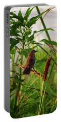 Portable Battery Charger featuring the photograph Bird In Cattails by Arthur Dodd