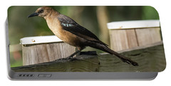 Grackle Portable Battery Charger