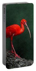 Bird On A Catwalk Portable Battery Charger
